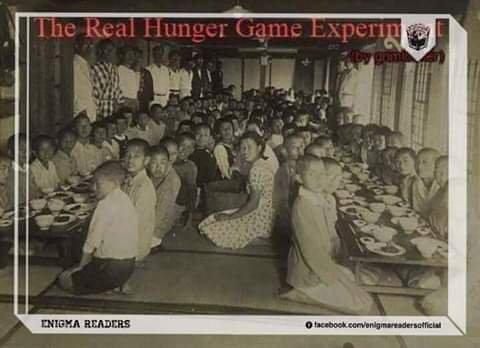 Thí nghiệm Trò chơi chết đói 2019 | Blog | Thị Trấn Buồn Tênh